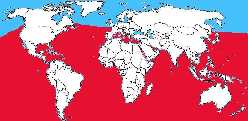 Diffusione pesce palla nel mondo