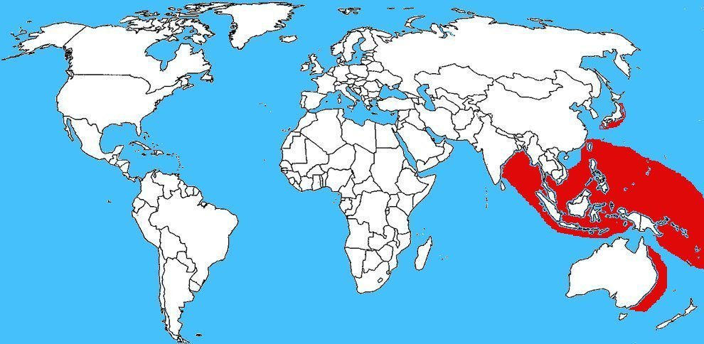 Mappa diffusione Laticauda colubrina