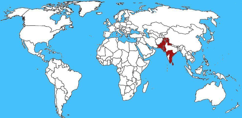 Mappa Diffusione Scorpione rosso indiano - Hottentotta tamulus