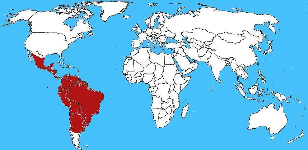 Mappa diffusione Pipistrello vampiro - Desmodus rotundus
