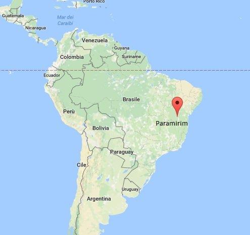Uomo muore in Brasile per un morso di pipistrello vampiro
