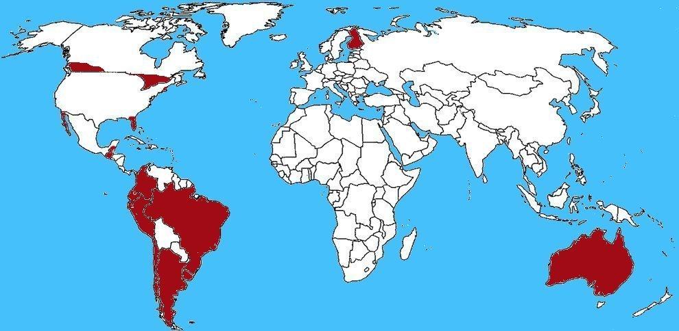 Mappa diffusione Ragno eremita cileno - Loxosceles laeta