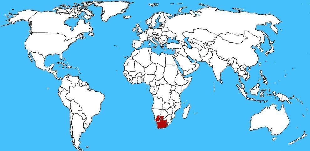 Mappa diffusione Cobra del sudafrica - Naja nivea