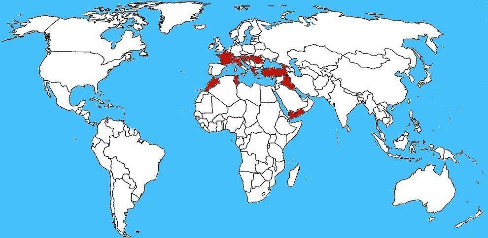 Mappa diffusione Euscorpius italicus - Scorpione italiano