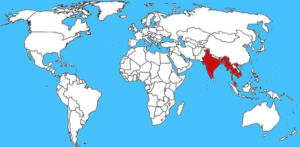 Mappa diffusione Ahaetulla nasuta - Serpente liana verde
