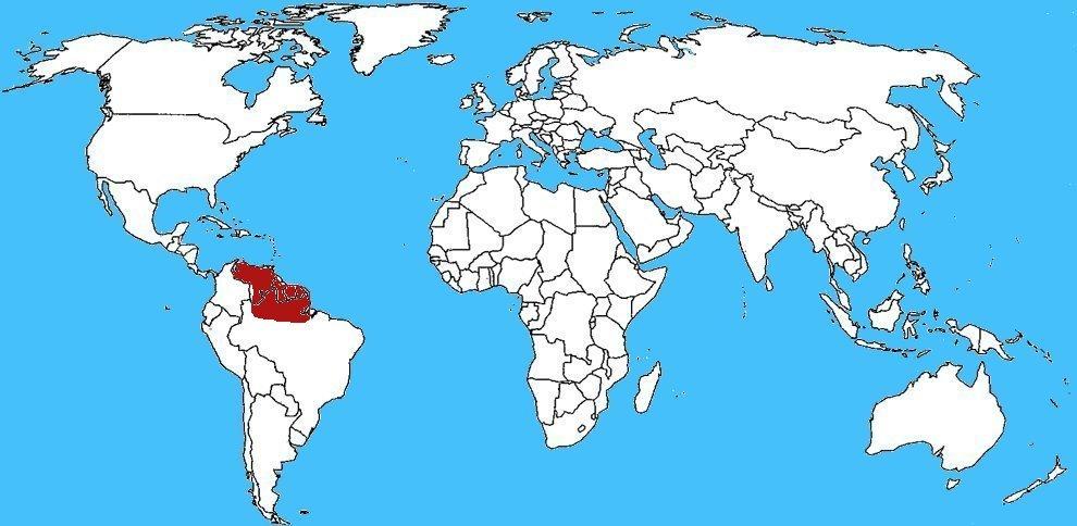 Mappa diffusione Theraphosa blondi - Tarantola golia