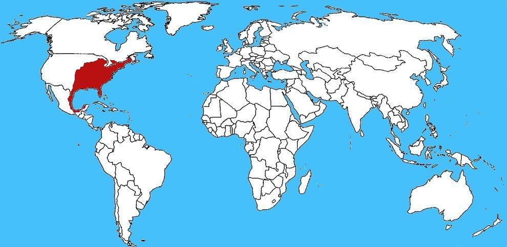 Mappa diffusione Bruco Sella - Acharia stimulea