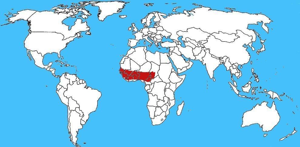 Mappa diffusione Echis ocellatus