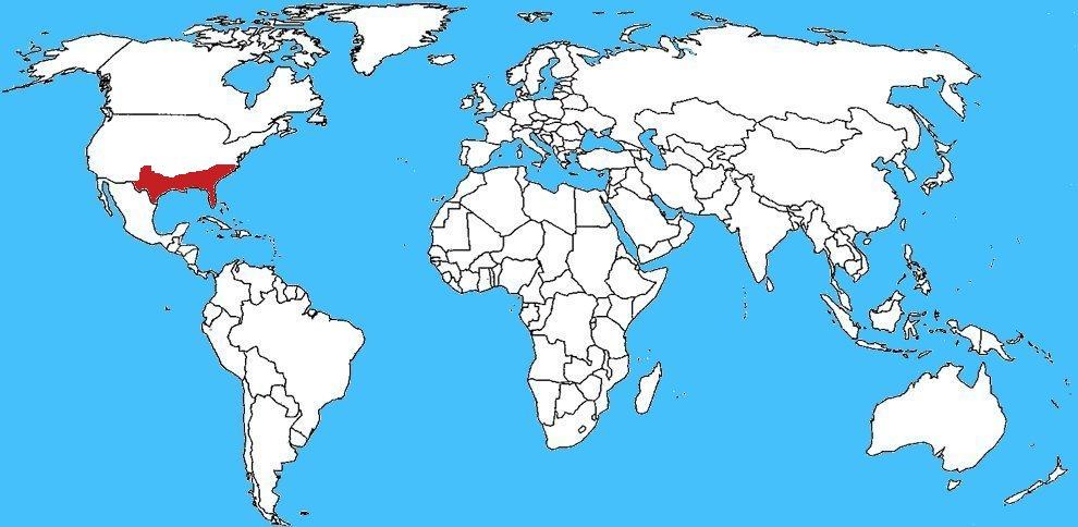Mappa diffusione Formica mietitrice della Florida - Pogonomyrmex badius
